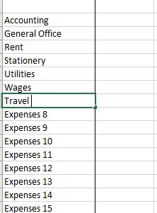 Profit and Loss Expenses